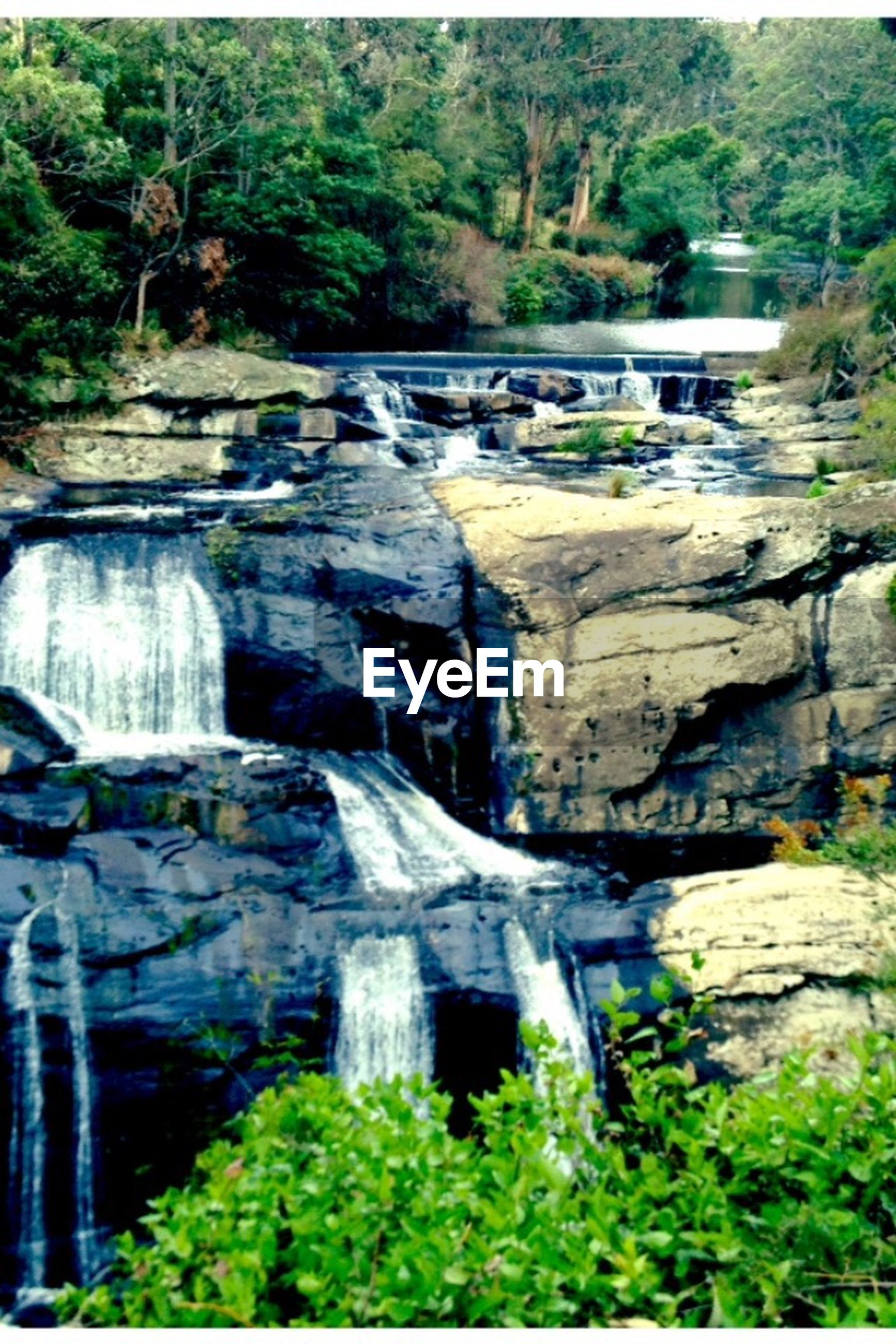 water, waterfall, flowing water, rock - object, tree, flowing, forest, beauty in nature, nature, scenics, rock formation, river, motion, stream, plant, rock, tranquility, growth, tranquil scene, green color