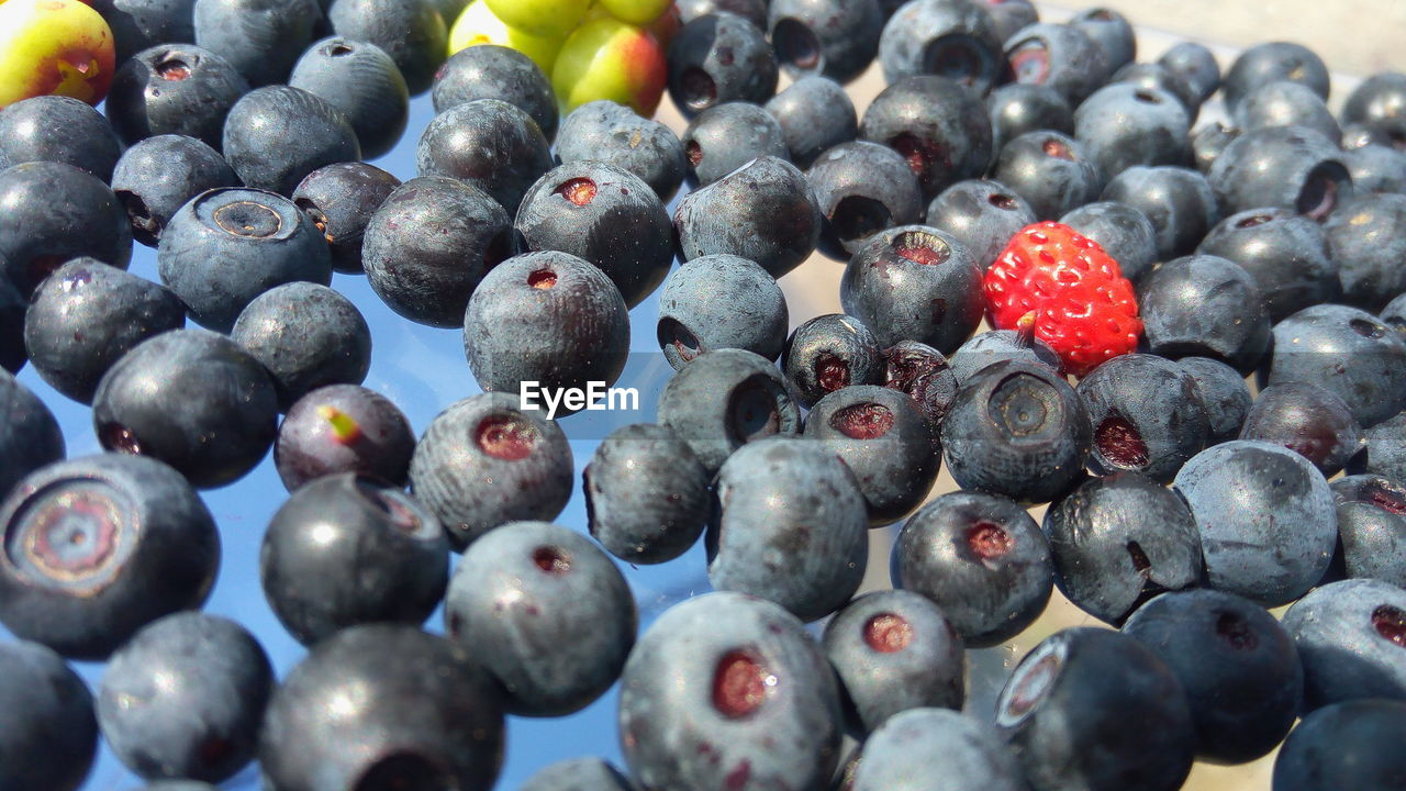 fruit, healthy eating, large group of objects, backgrounds, food and drink, no people, full frame, close-up, blueberry, food, day, freshness, outdoors, black olive
