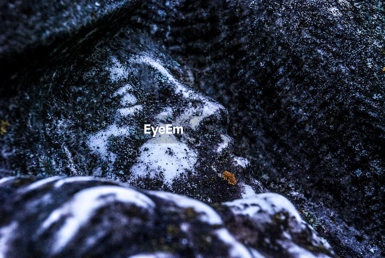 snow, winter, cold temperature, nature, no people, outdoors, day, close-up, backgrounds, beauty in nature, tree