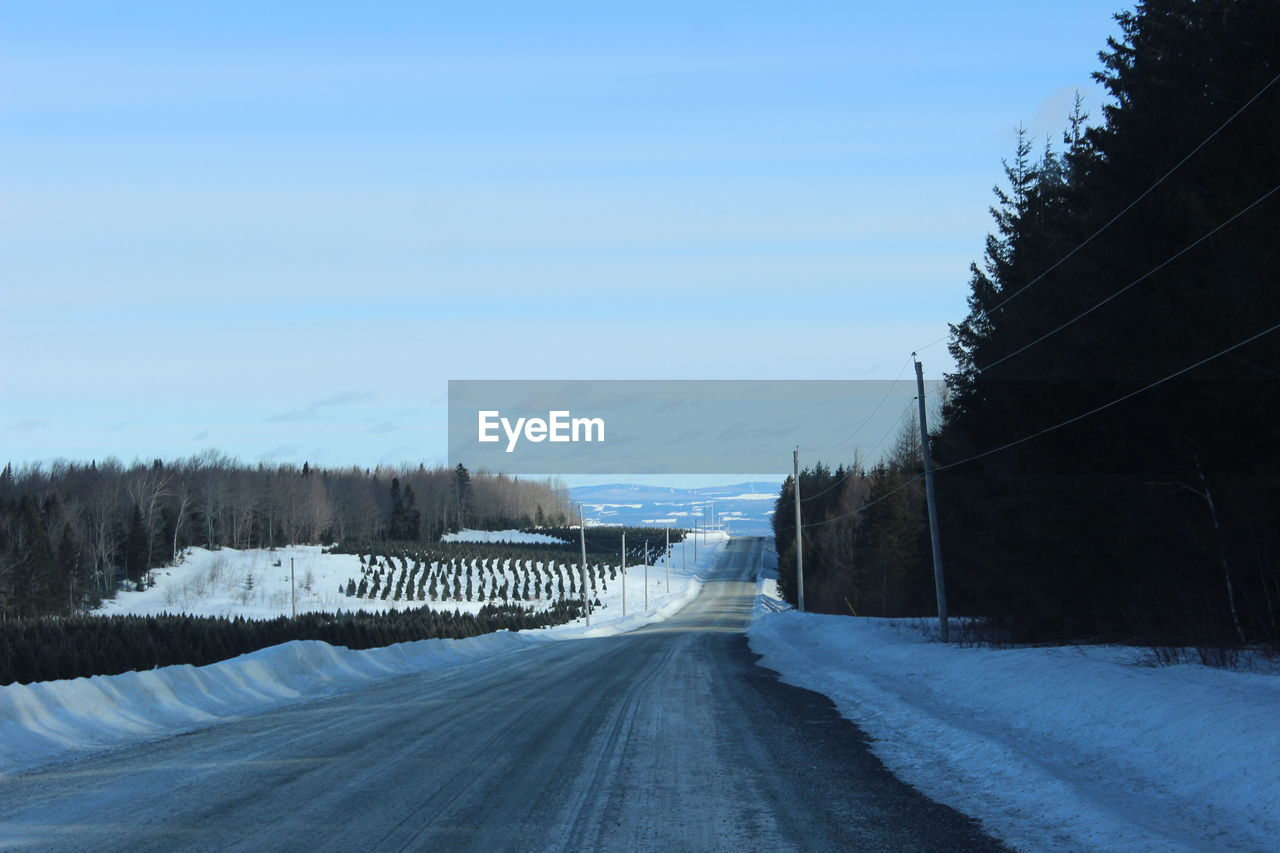 sky, direction, cold temperature, winter, the way forward, snow, road, transportation, tree, no people, nature, day, plant, diminishing perspective, outdoors, architecture, scenics - nature, empty road, blue