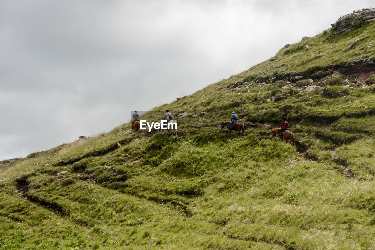 Rear view of people riding horses on hill against cloudy sky