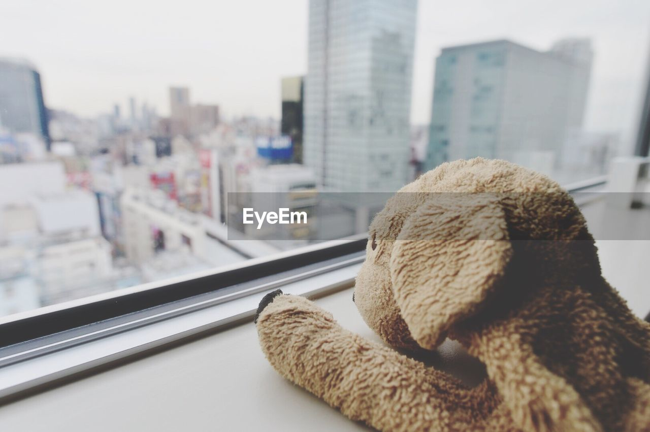 Close-Up Of Soft Toy By Window