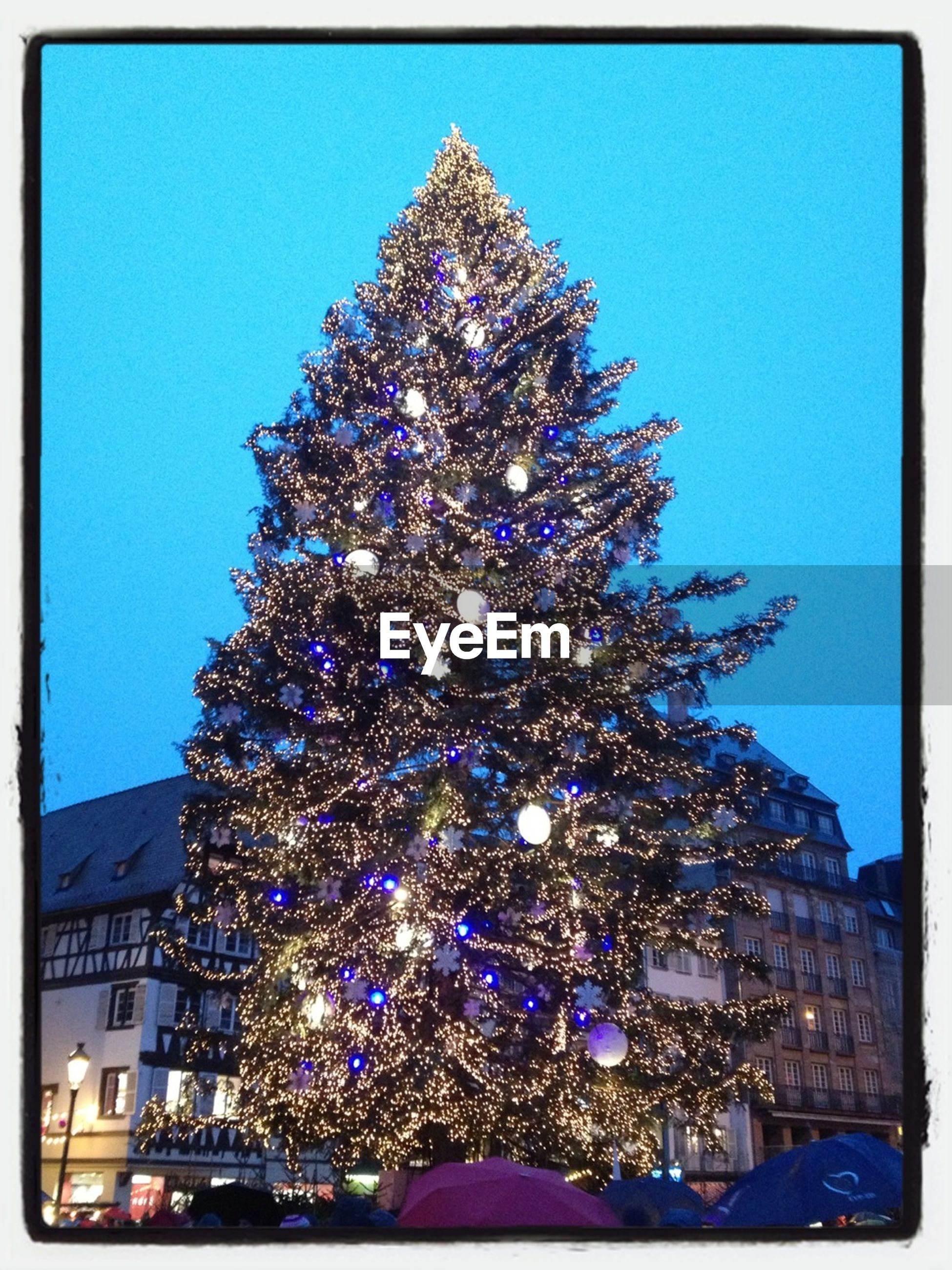 illuminated, transfer print, blue, clear sky, low angle view, night, auto post production filter, celebration, building exterior, architecture, built structure, arts culture and entertainment, city, decoration, christmas decoration, christmas, christmas tree, christmas lights, outdoors, lighting equipment