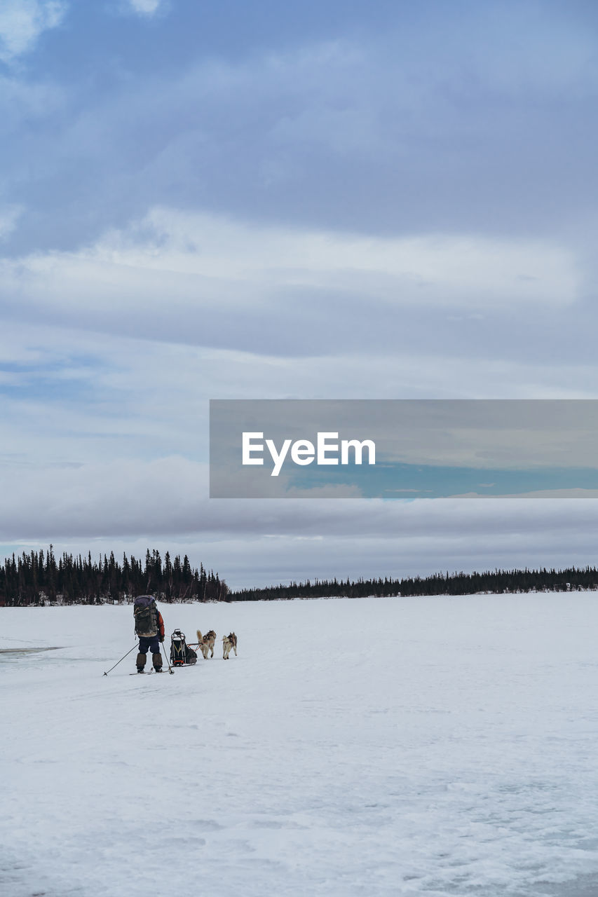 Person walking on snow covered land against sky