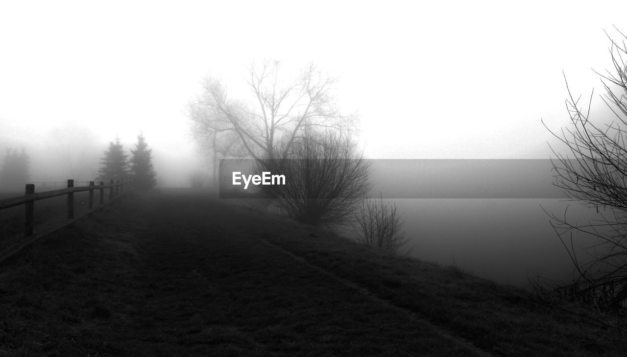 fog, nature, tranquil scene, tranquility, bare tree, landscape, scenics, tree, outdoors, beauty in nature, no people, day, winter, sky