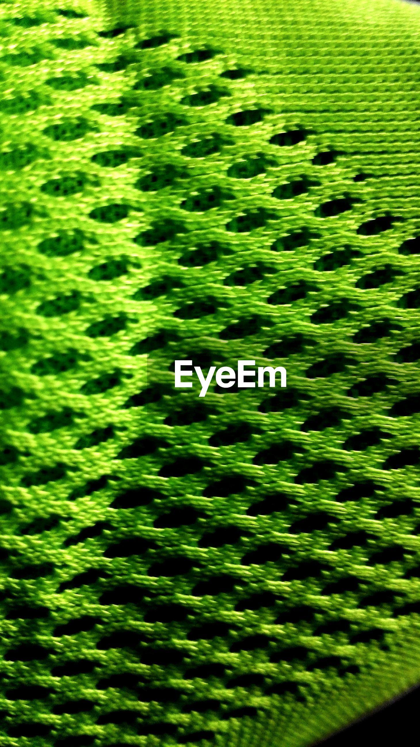 Detail shot of green surface