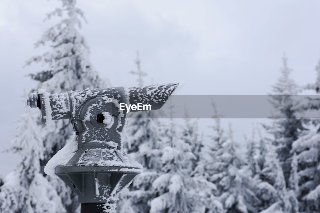 snow, winter, cold temperature, weather, tree, day, no people, focus on foreground, outdoors, nature, snowing, motion, close-up, snowflake, sky