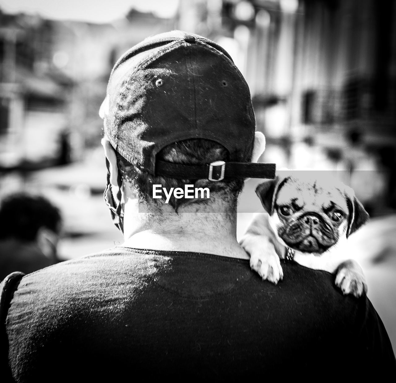 REAR VIEW OF MAN AND DOG WITH CAMERA