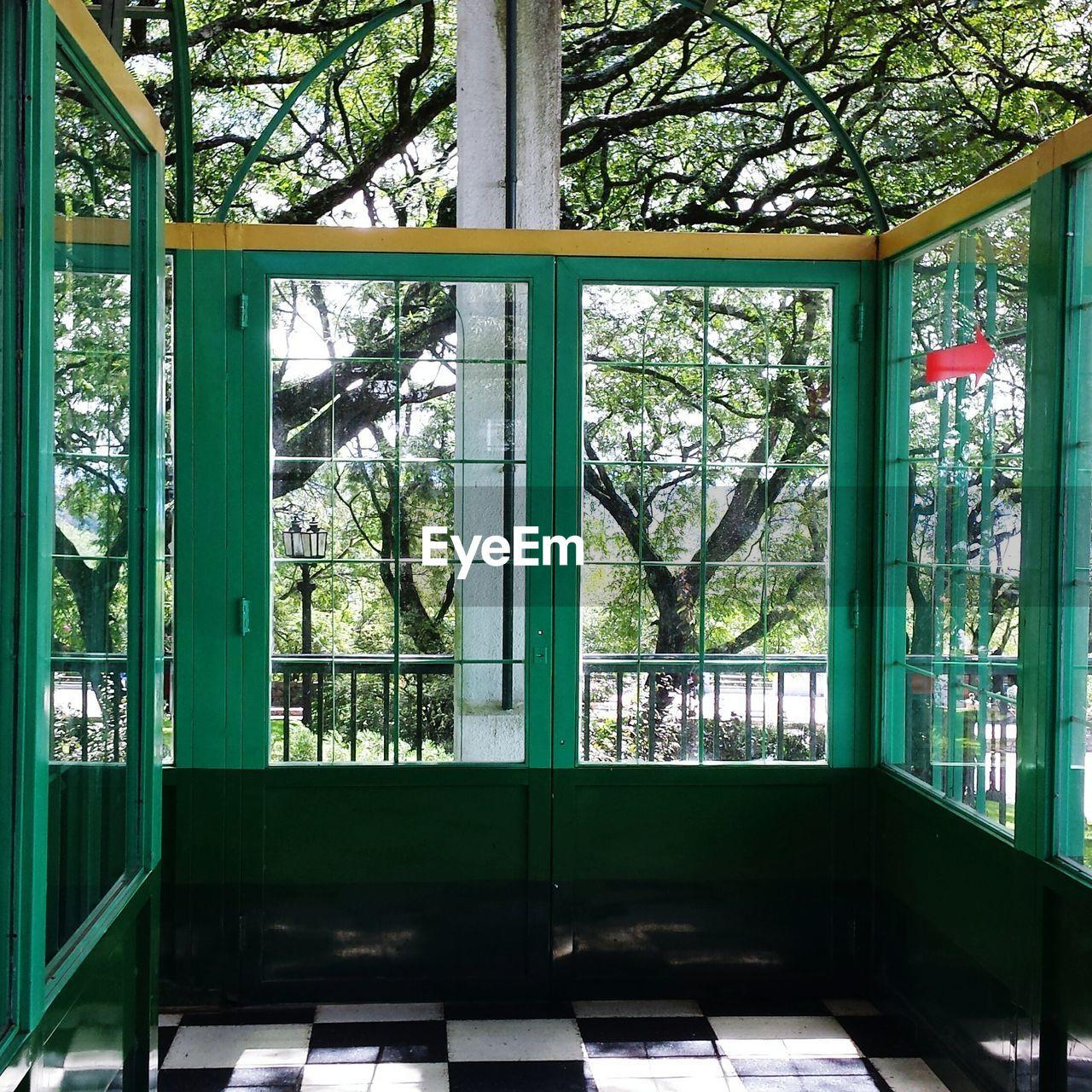 Trees seen through closed glass door