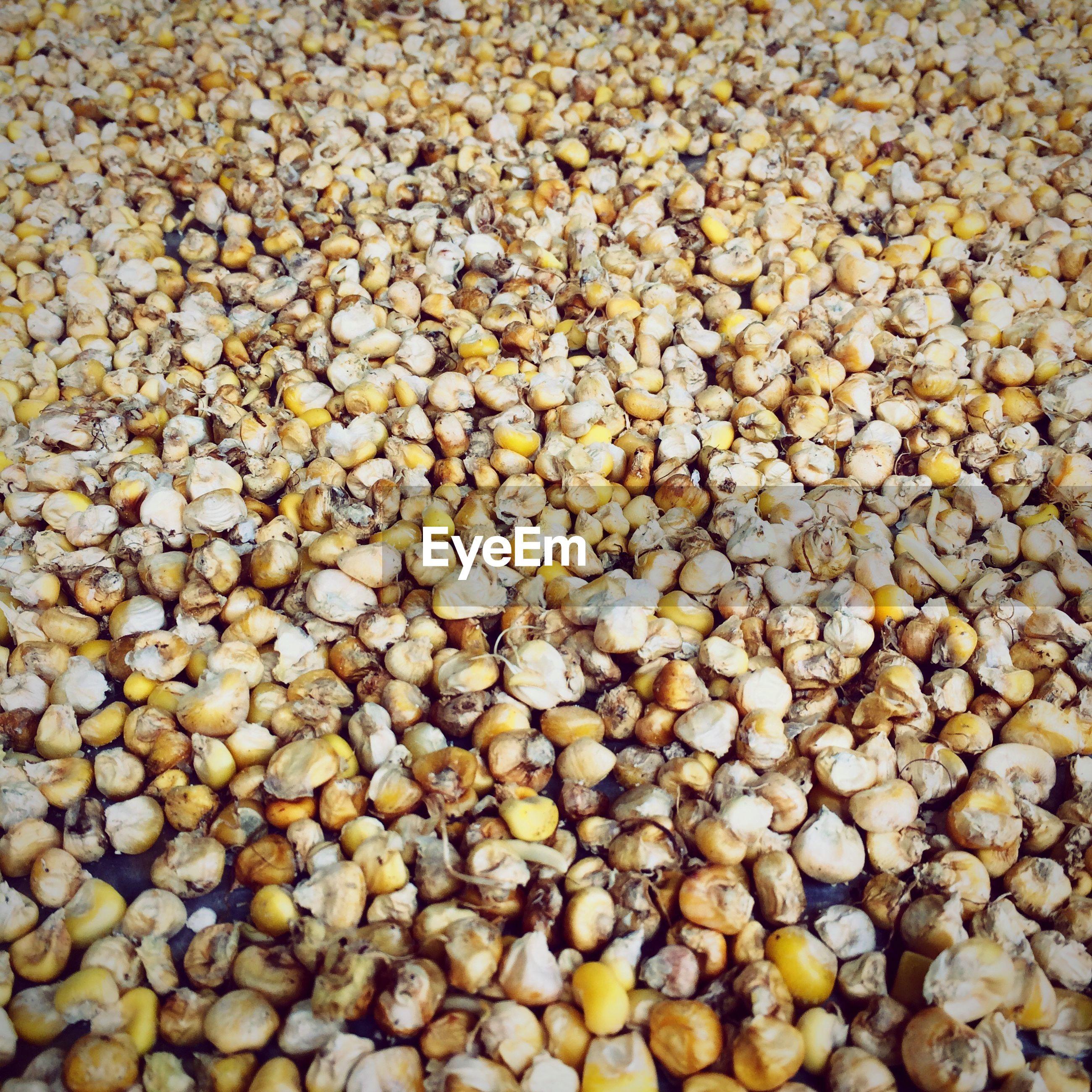Full frame shot of corn kernels