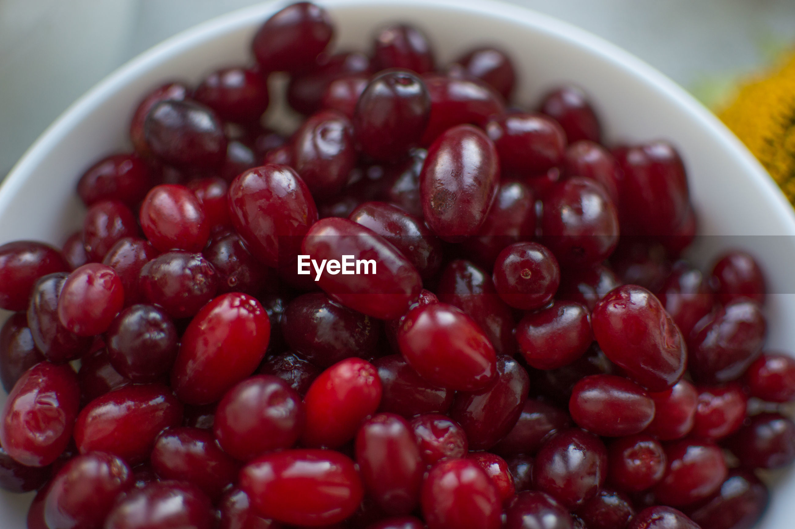 CLOSE-UP OF CHERRIES IN BOWL AT HOME