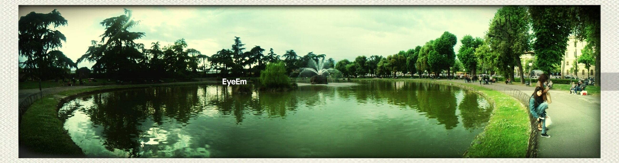 transfer print, tree, auto post production filter, water, sky, reflection, panoramic, tranquility, lake, tranquil scene, nature, scenics, beauty in nature, palm tree, waterfront, cloud - sky, growth, pond, river, cloud