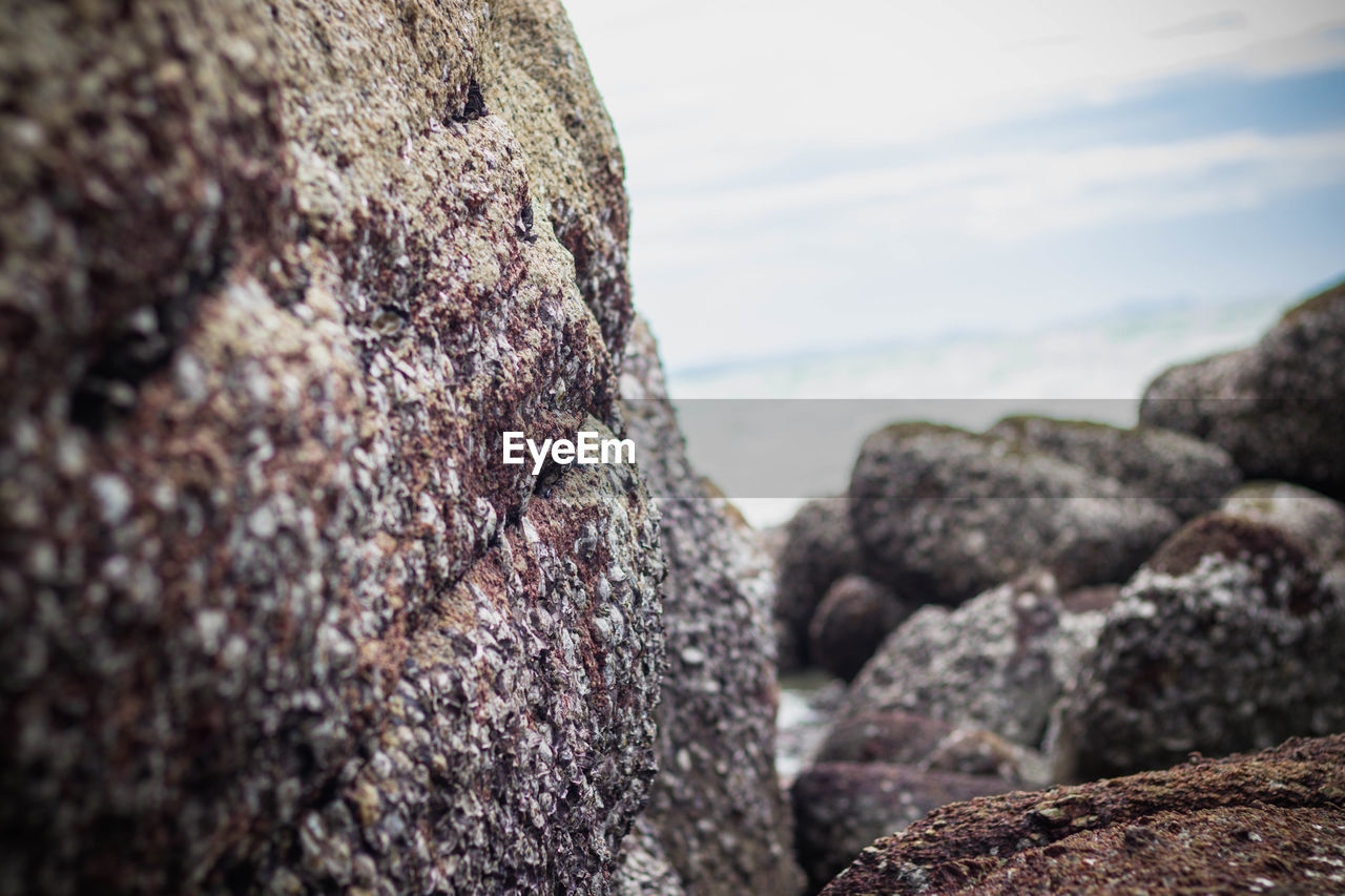 solid, rock, rock - object, textured, close-up, focus on foreground, selective focus, rough, no people, nature, day, outdoors, beach, sea, tranquility, sky, land, rock formation, beauty in nature, geology, lichen, eroded