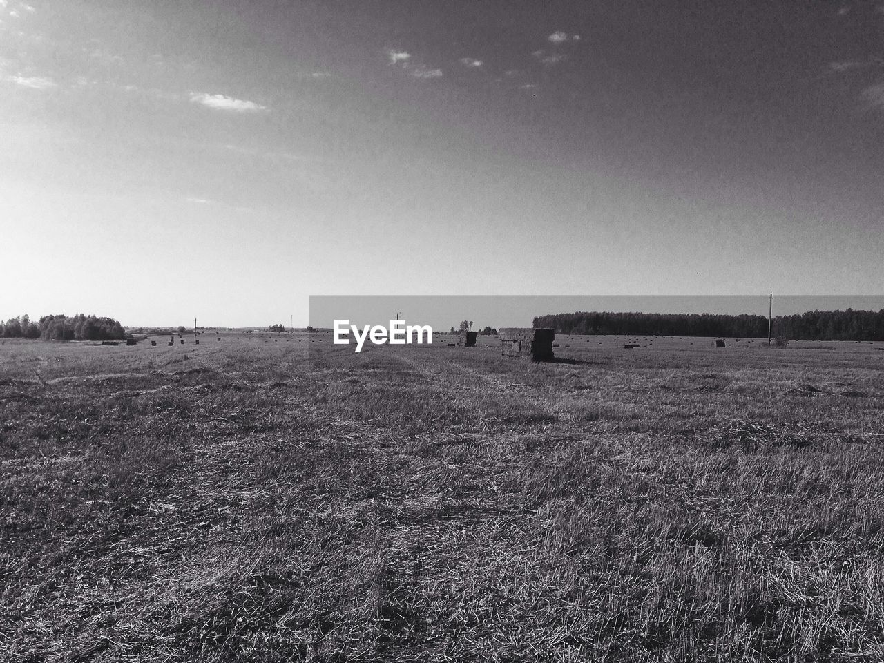 field, landscape, grass, agriculture, day, outdoors, nature, no people, sky