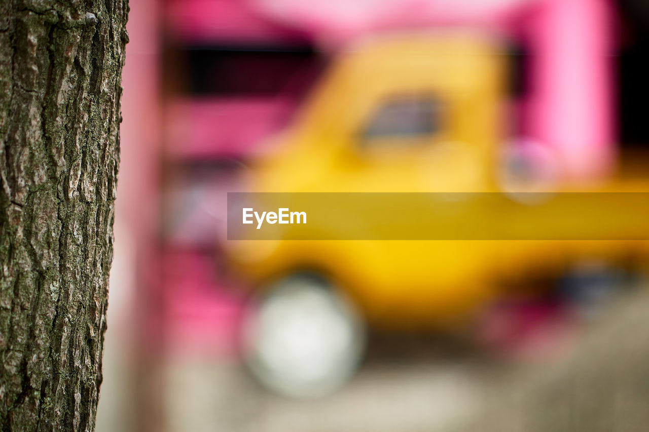 tree trunk, focus on foreground, tree, selective focus, day, textured, outdoors, close-up, no people, yellow, pink color, nature