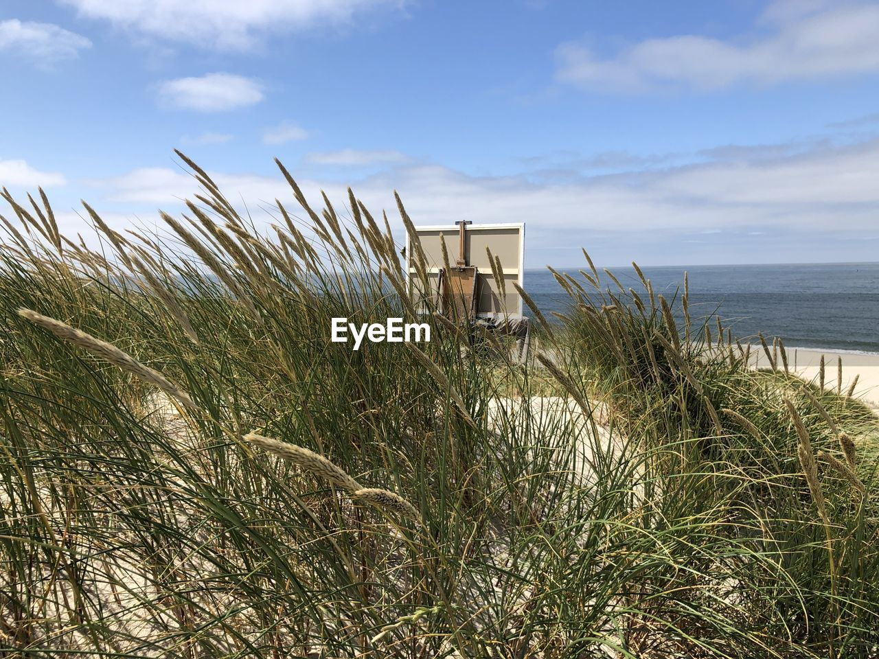 sky, plant, sea, water, cloud - sky, land, beach, nature, scenics - nature, architecture, beauty in nature, grass, tranquility, growth, built structure, tranquil scene, day, no people, horizon, horizon over water, outdoors, marram grass