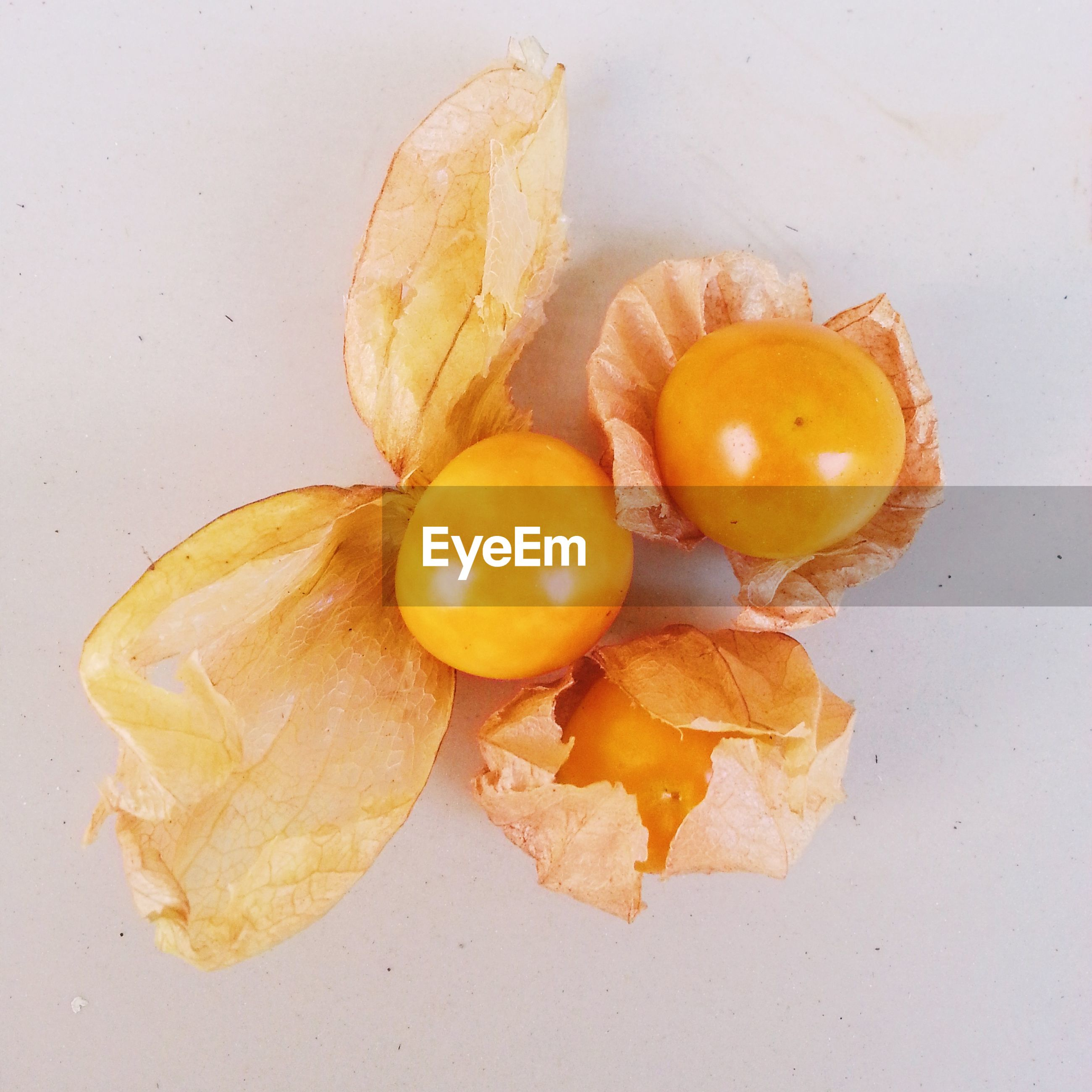 Close-up of cape gooseberries against white background