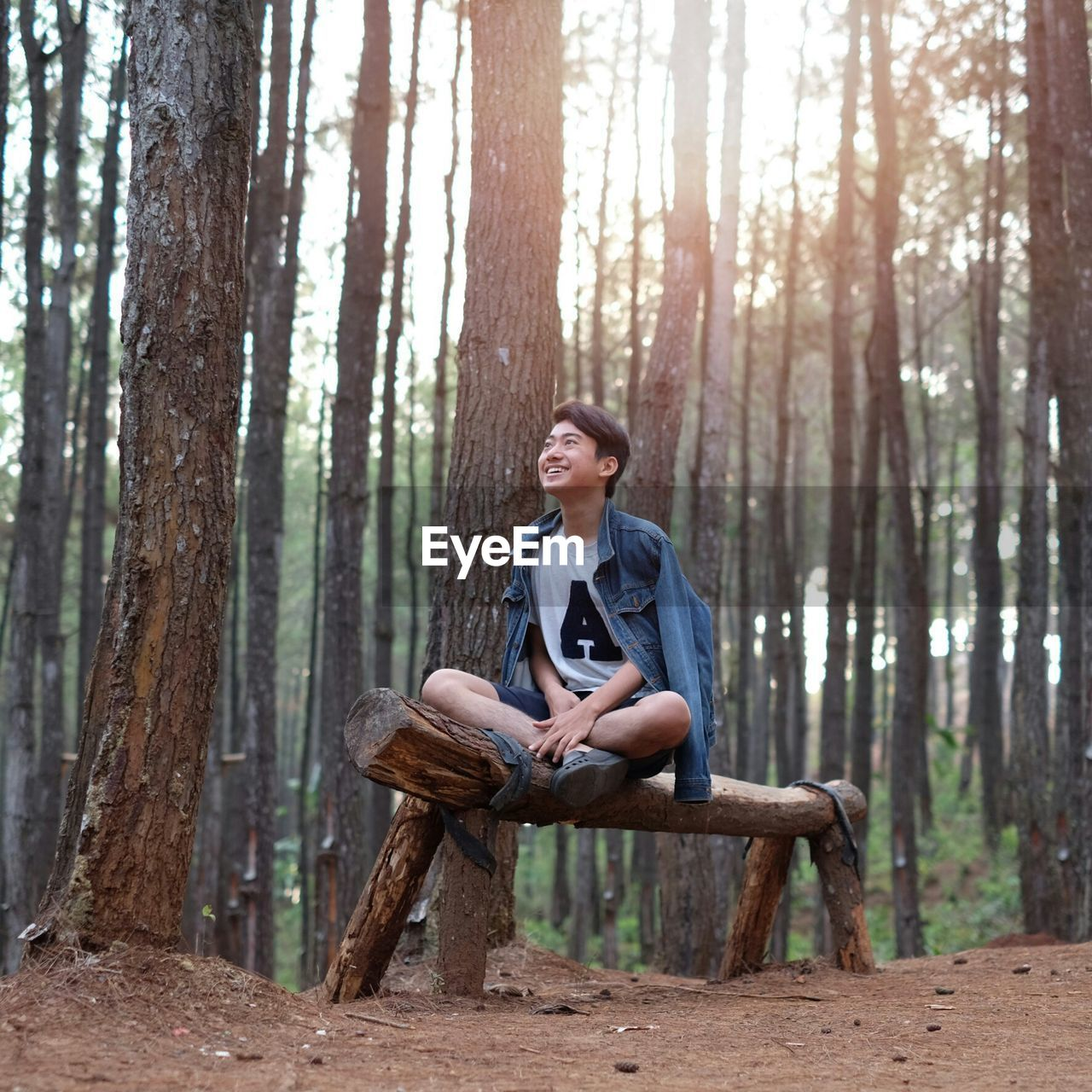 Man Sitting On Bench In Forest
