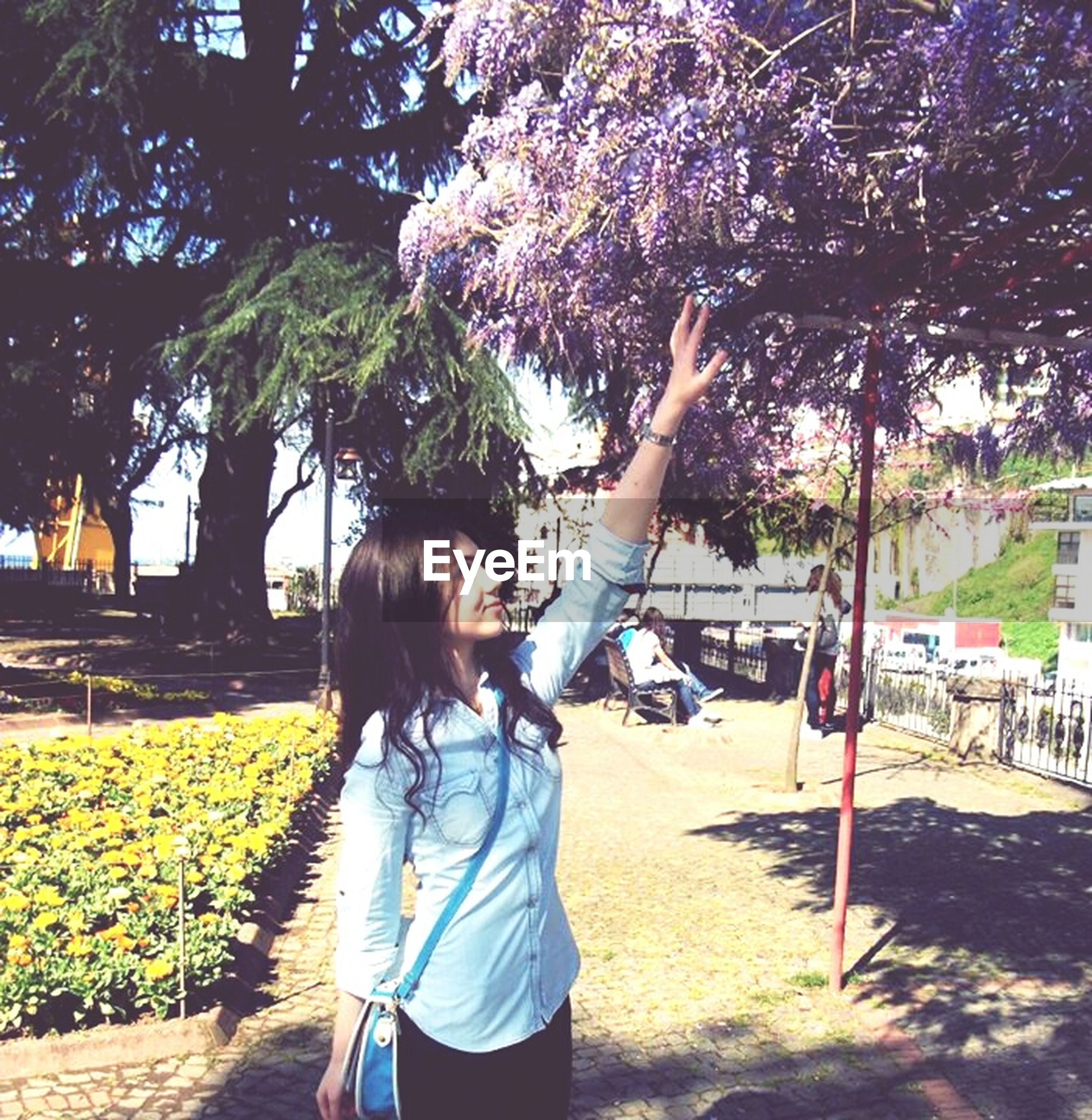 tree, lifestyles, leisure activity, casual clothing, young adult, person, rear view, long hair, young women, full length, standing, park - man made space, transportation, growth, sunlight, flower, outdoors