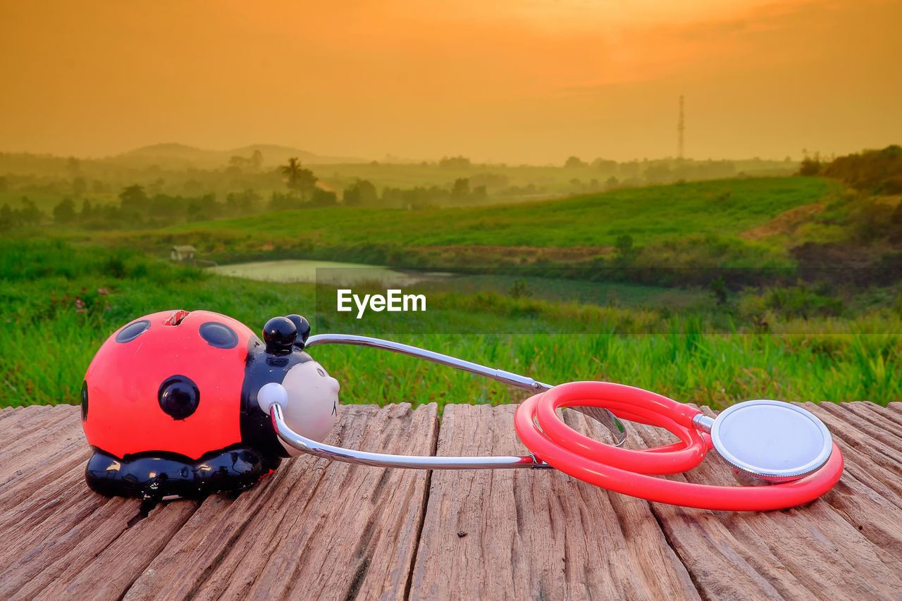orange color, representation, red, nature, animal representation, plant, sky, no people, sunset, grass, day, land, security, field, toy, still life, focus on foreground, safety, protection, inflatable, outdoor play equipment