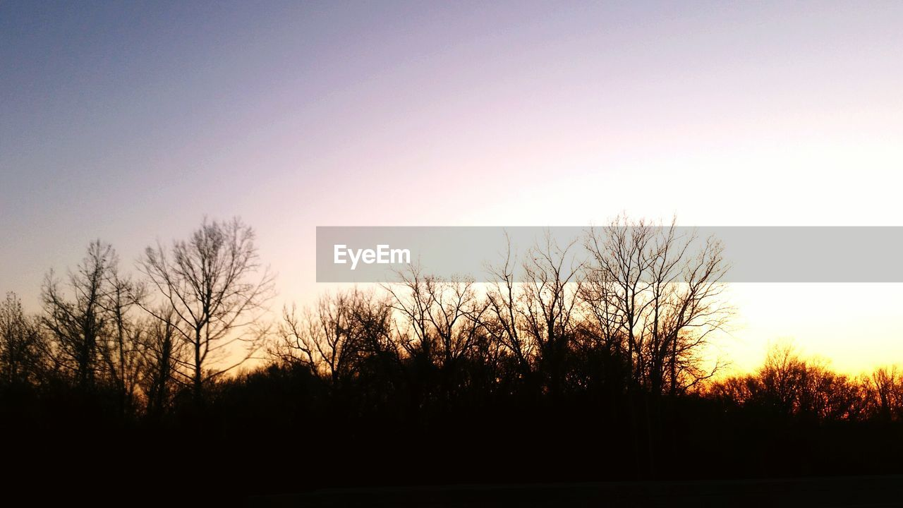 silhouette, bare tree, sunset, tree, tranquil scene, beauty in nature, tranquility, nature, scenics, no people, outdoors, clear sky, sky, landscape, day