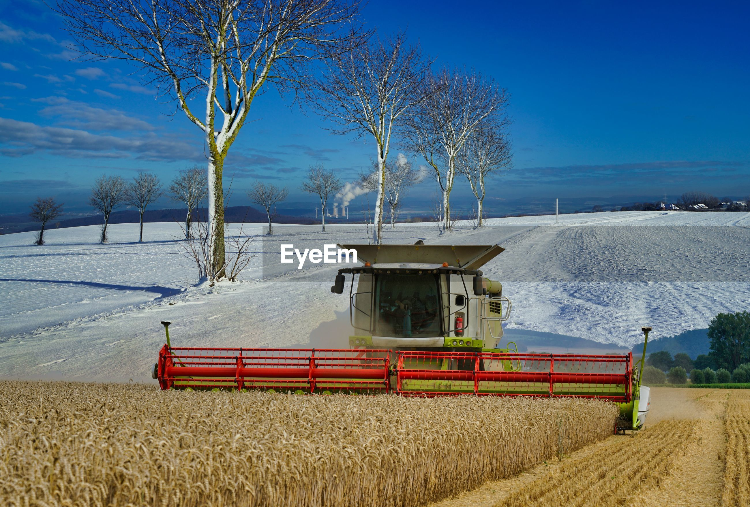 VIEW OF AGRICULTURAL FIELD IN WINTER