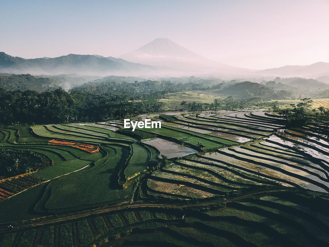 Aerial View Of Terraced Field Against Sky