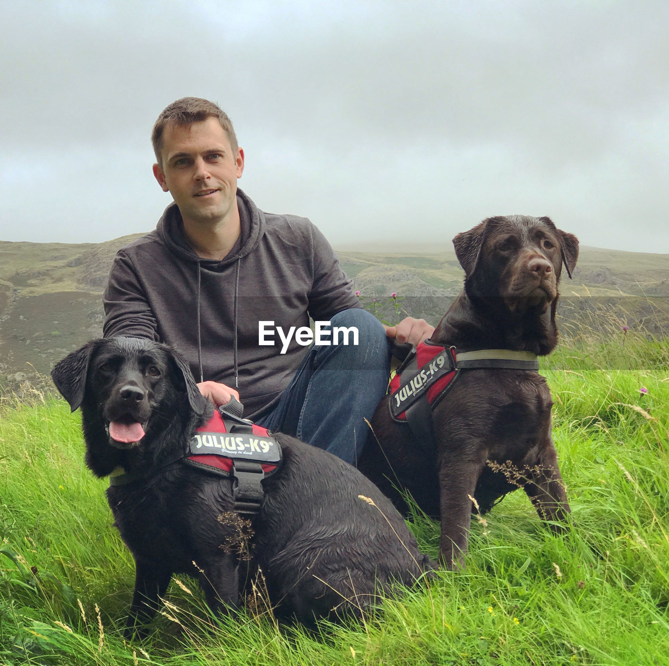 Portrait of man with dogs sitting on field