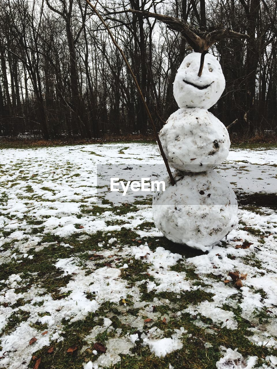 snow, winter, cold temperature, weather, tree, snowman, human representation, nature, outdoors, field, day, no people, statue, bare tree, frozen, beauty in nature, sculpture, anthropomorphic face, branch, warm clothing, close-up