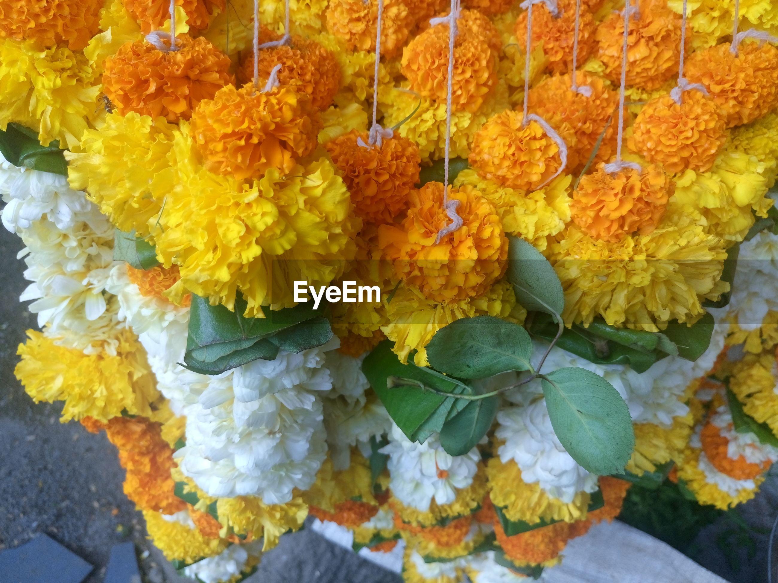 High angle view of garlands hanging at market