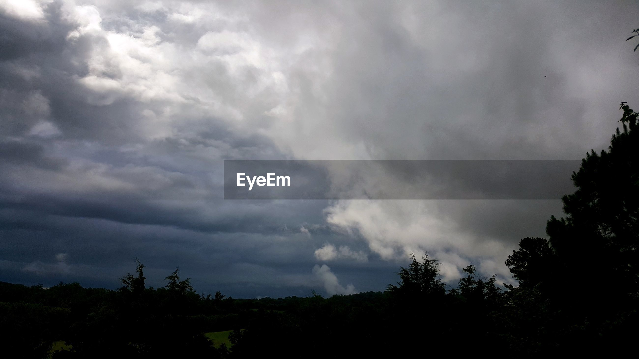 tree, weather, cloud - sky, nature, beauty in nature, sky, storm cloud, no people, scenics, storm, tranquility, silhouette, outdoors, low angle view, thunderstorm, day