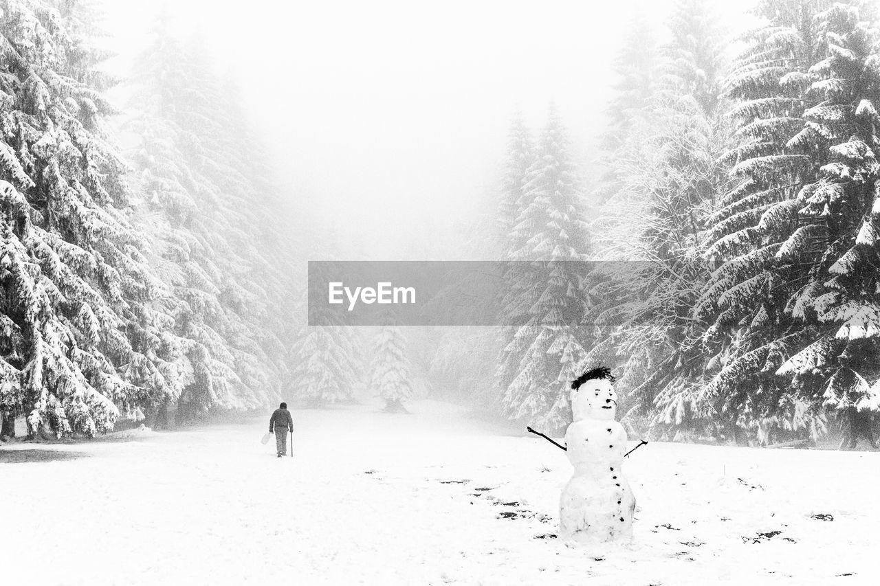 Snowman On Field Amidst Pine Trees