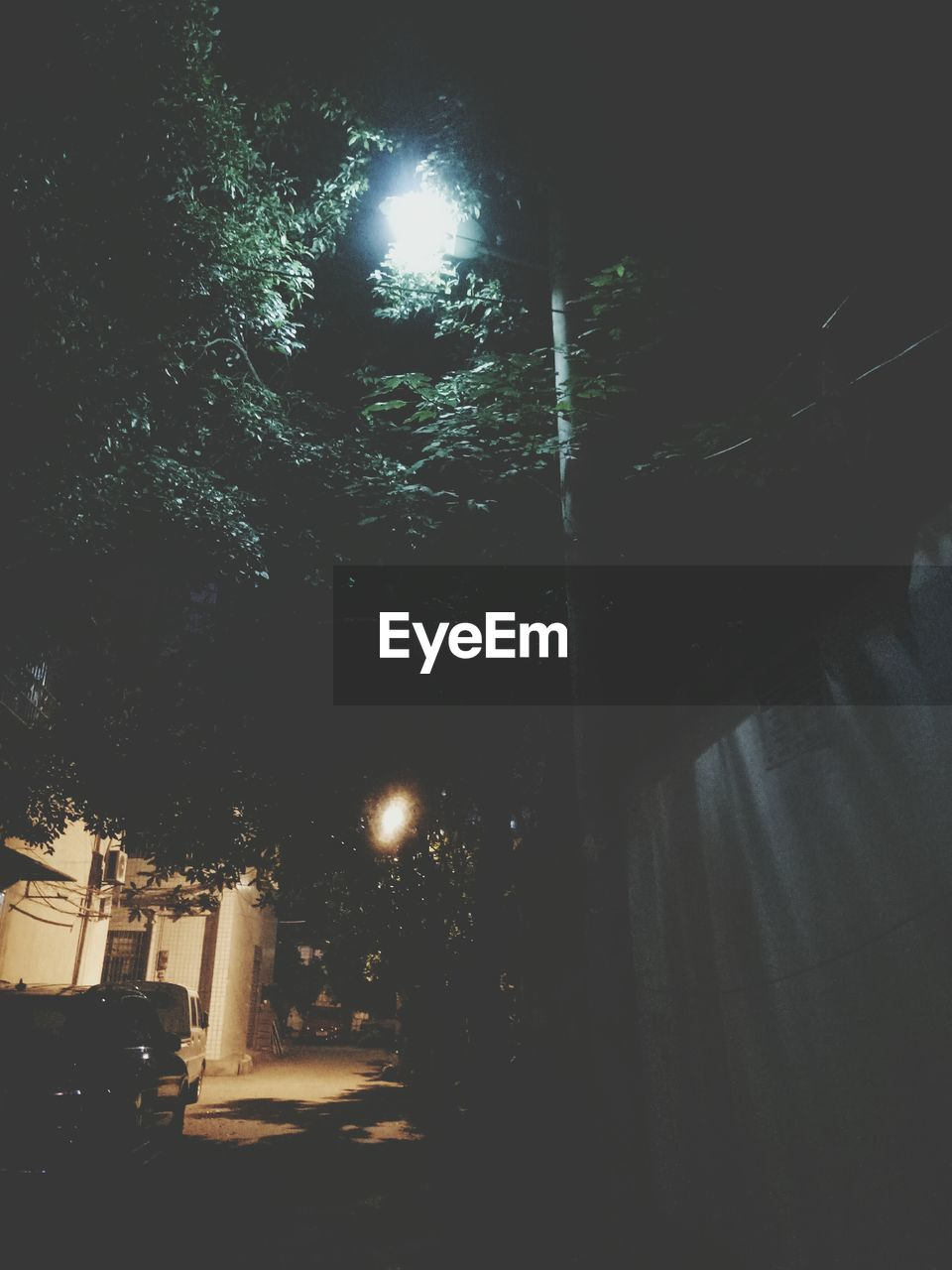 night, tree, illuminated, street light, car, street, outdoors, road, no people, land vehicle, transportation, city, architecture, building exterior, nature, sky