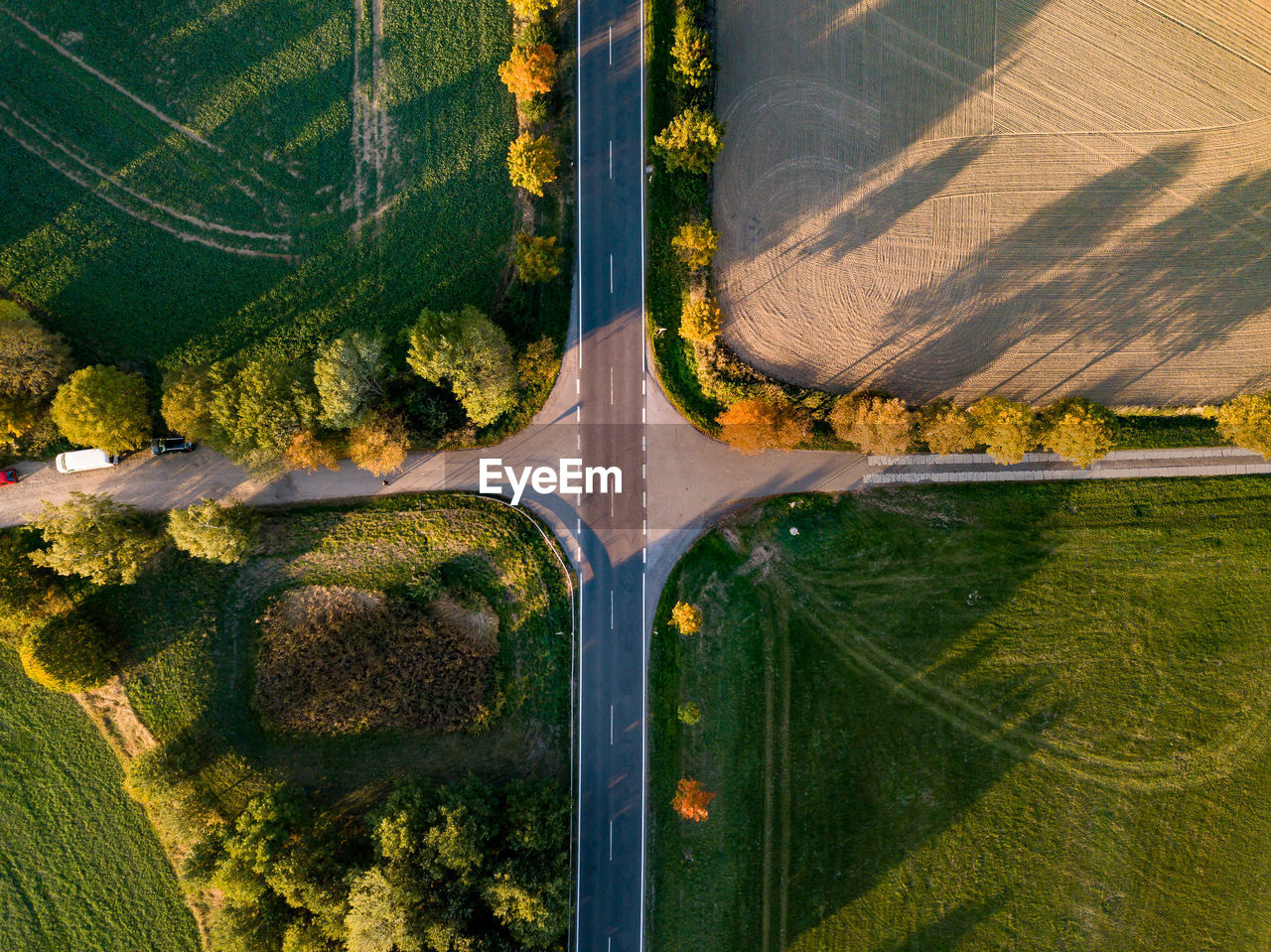 aerial view, plant, nature, tree, land, road, no people, green color, landscape, environment, scenics - nature, rural scene, growth, day, forest, sunlight, agriculture, transportation, outdoors, tranquility, woodland, above