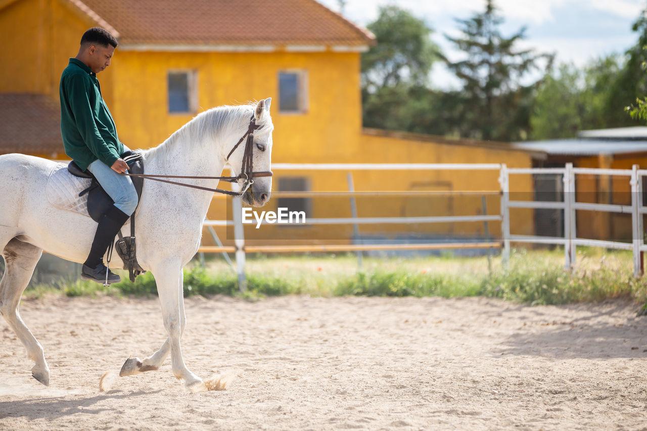 Full length of man riding horse against fence