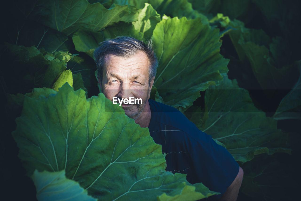 Portrait Of Senior Man Amidst Leaf Vegetables On Field