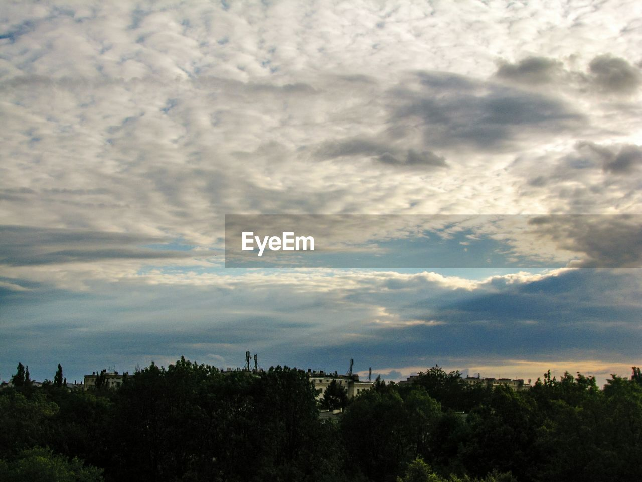 cloud - sky, tree, sky, plant, beauty in nature, scenics - nature, tranquil scene, nature, tranquility, no people, outdoors, growth, environment, landscape, day, non-urban scene, idyllic, land, forest