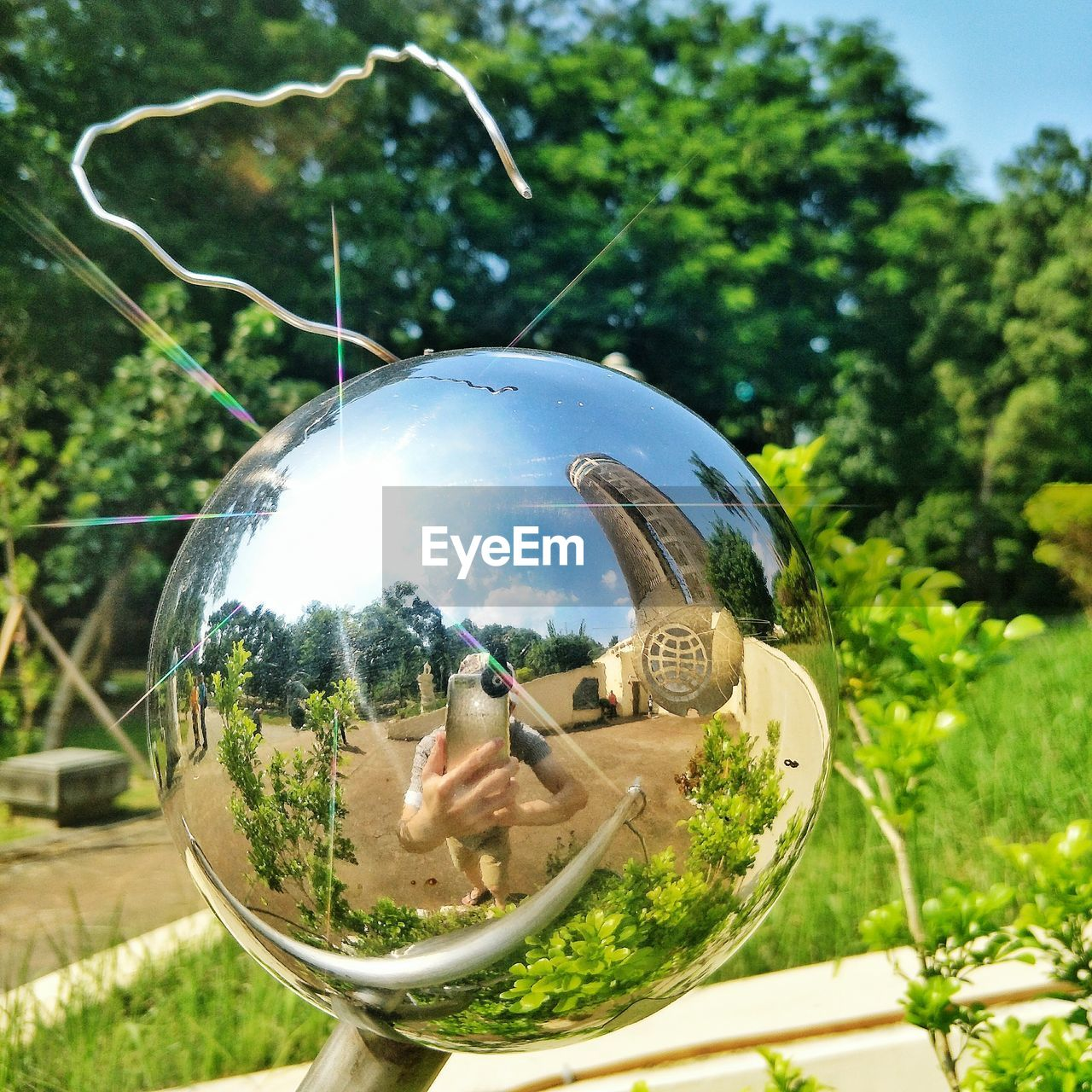 plant, tree, day, reflection, nature, close-up, glass - material, focus on foreground, transparent, outdoors, sphere, sunlight, no people, green color, land vehicle, mirror, growth, shape, land, sky
