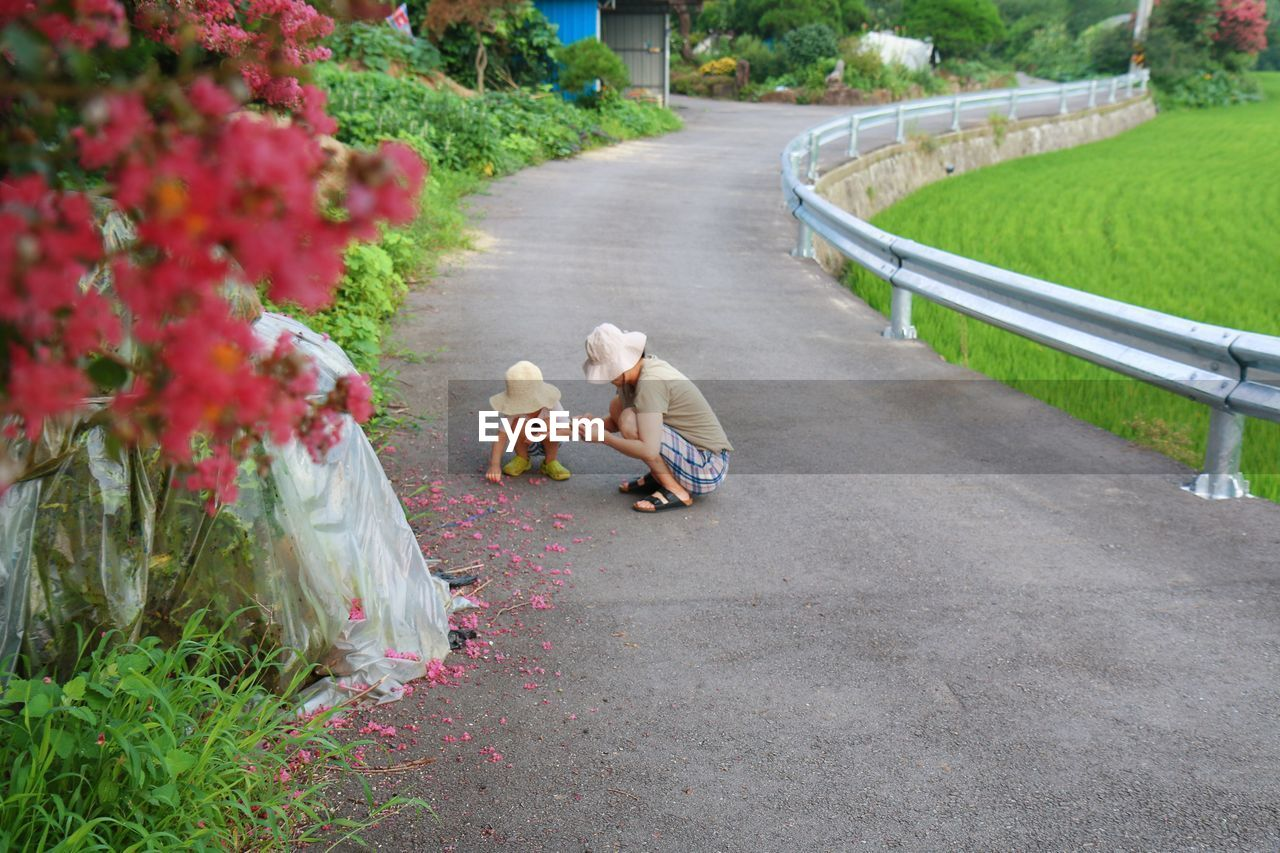 High Angle View Of Mother And Son Wearing Hats While Picking Flowers From Footpath At Park