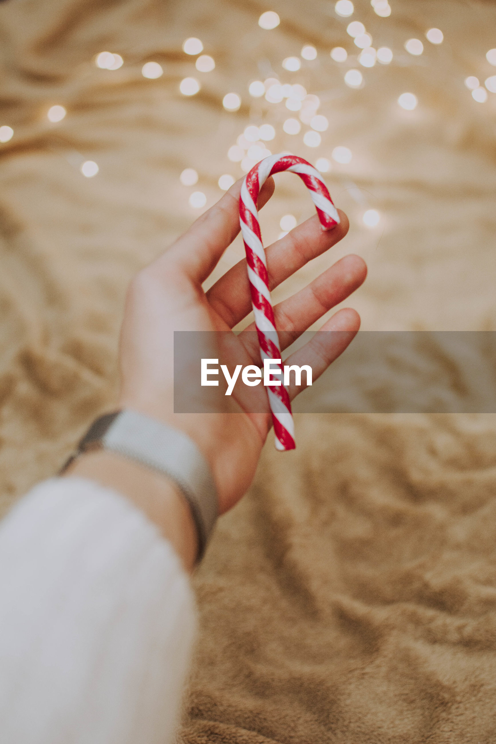 Close-up of hand holding candy cane