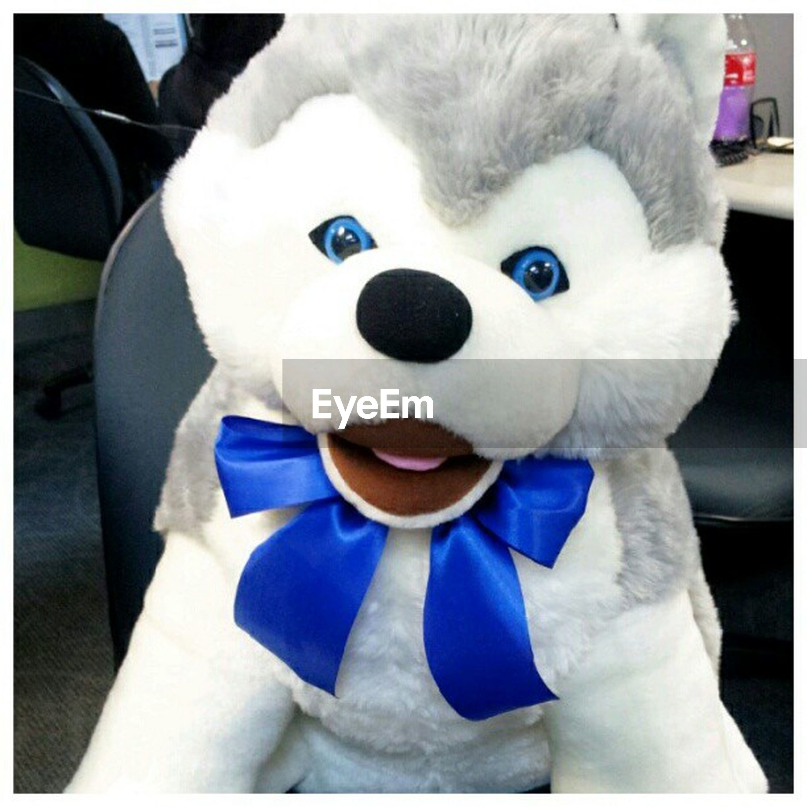 transfer print, white color, auto post production filter, toy, animal representation, indoors, human representation, close-up, creativity, art and craft, art, stuffed toy, high angle view, blue, white, day, no people, looking at camera, childhood