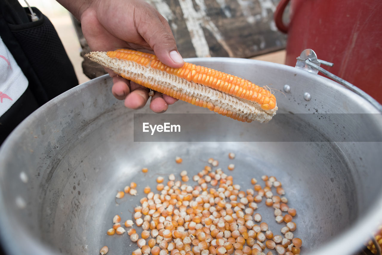 food and drink, human hand, food, hand, real people, one person, holding, human body part, freshness, corn, healthy eating, preparation, wellbeing, indoors, vegetable, men, day, unrecognizable person, high angle view, sweetcorn, preparing food, finger