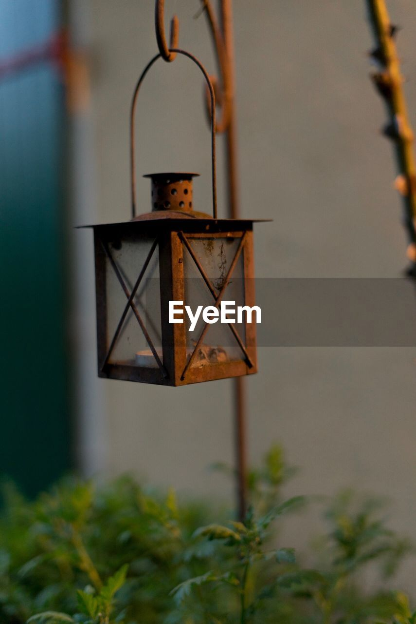 metal, no people, focus on foreground, nature, plant, day, lighting equipment, hanging, outdoors, close-up, built structure, tree, safety, security, selective focus, protection, architecture, growth, sky, rusty, electric lamp
