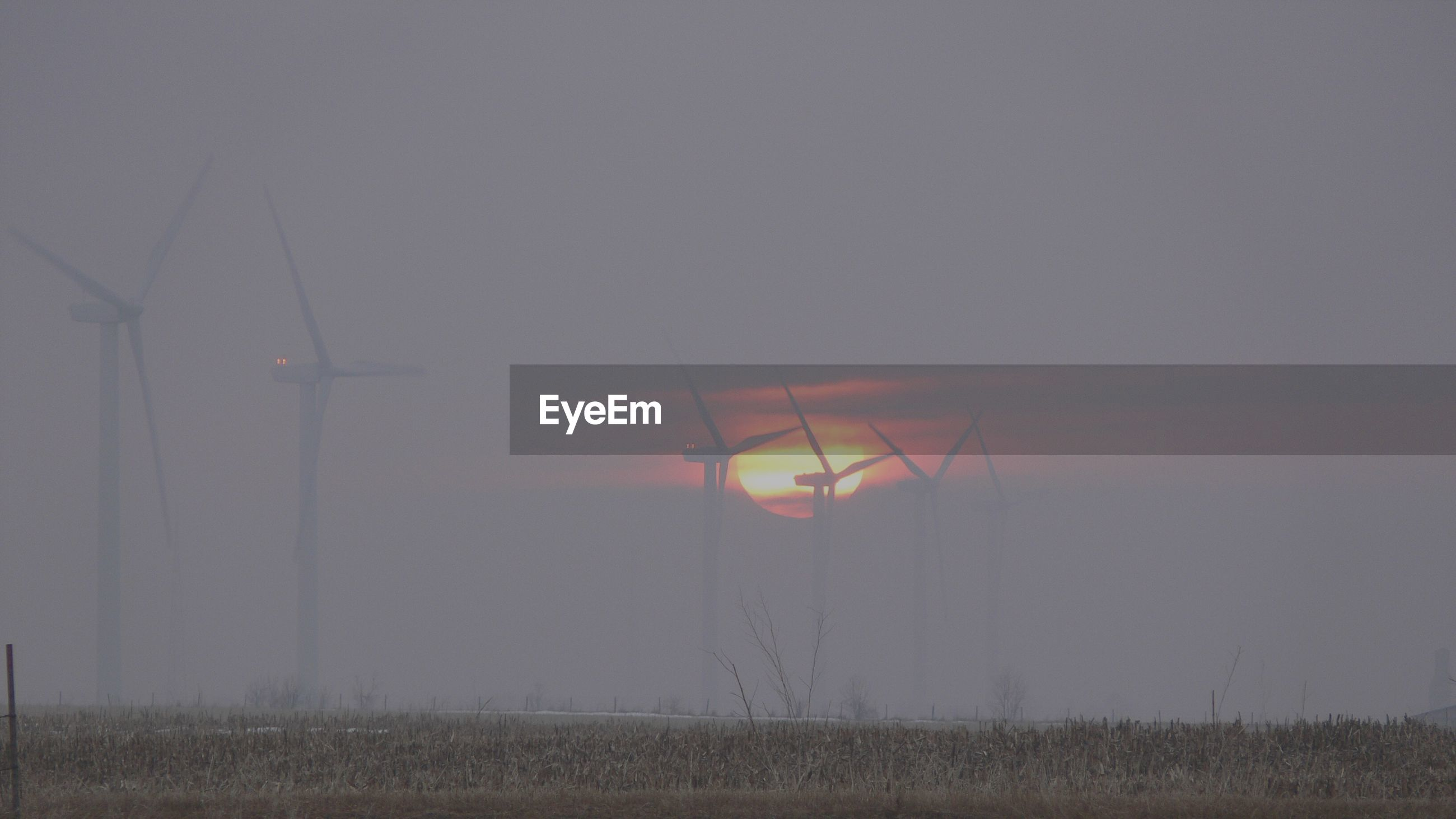 Foggy wind farm at sunset