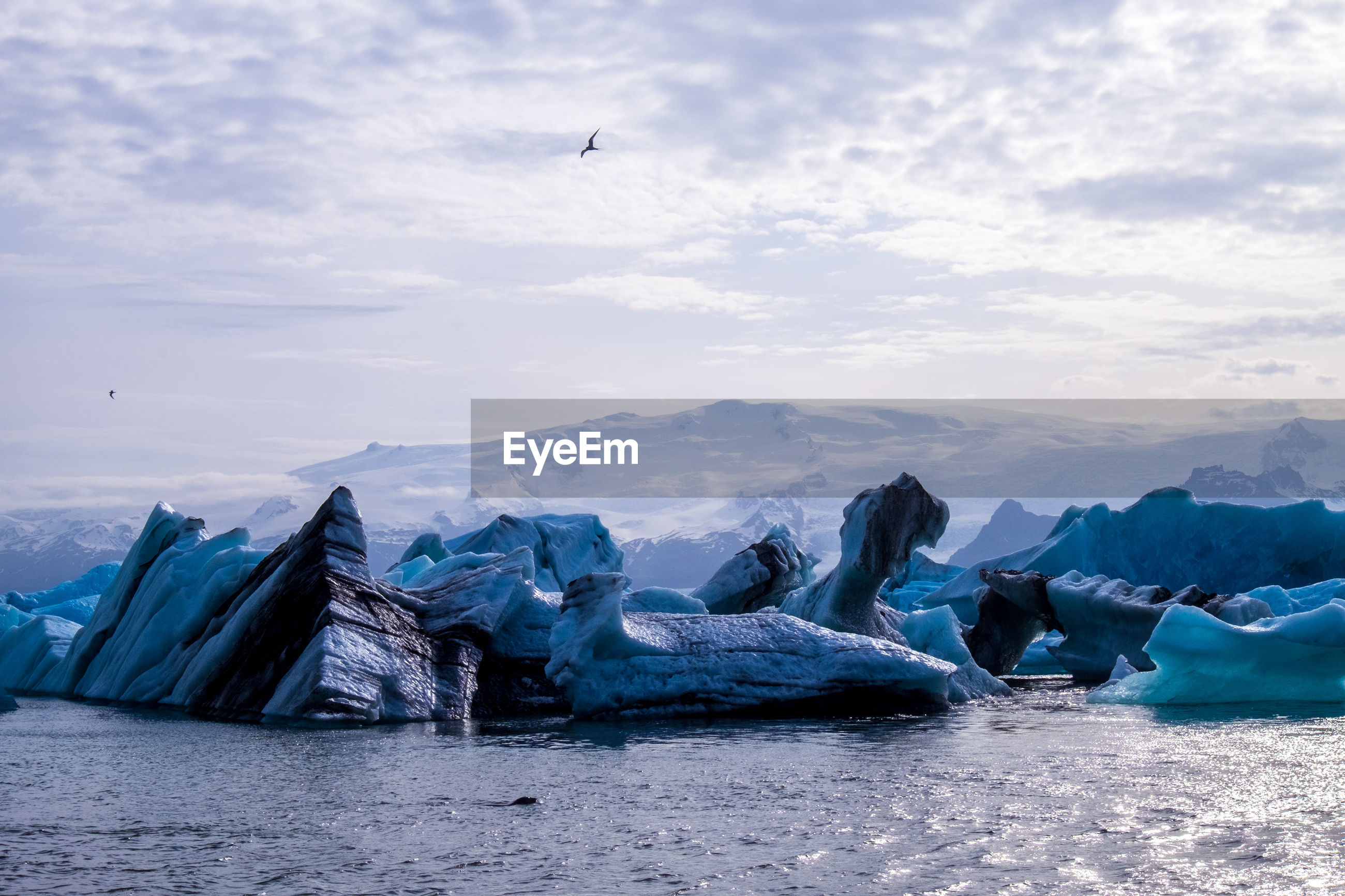 Icebergs in sea against sky during winter