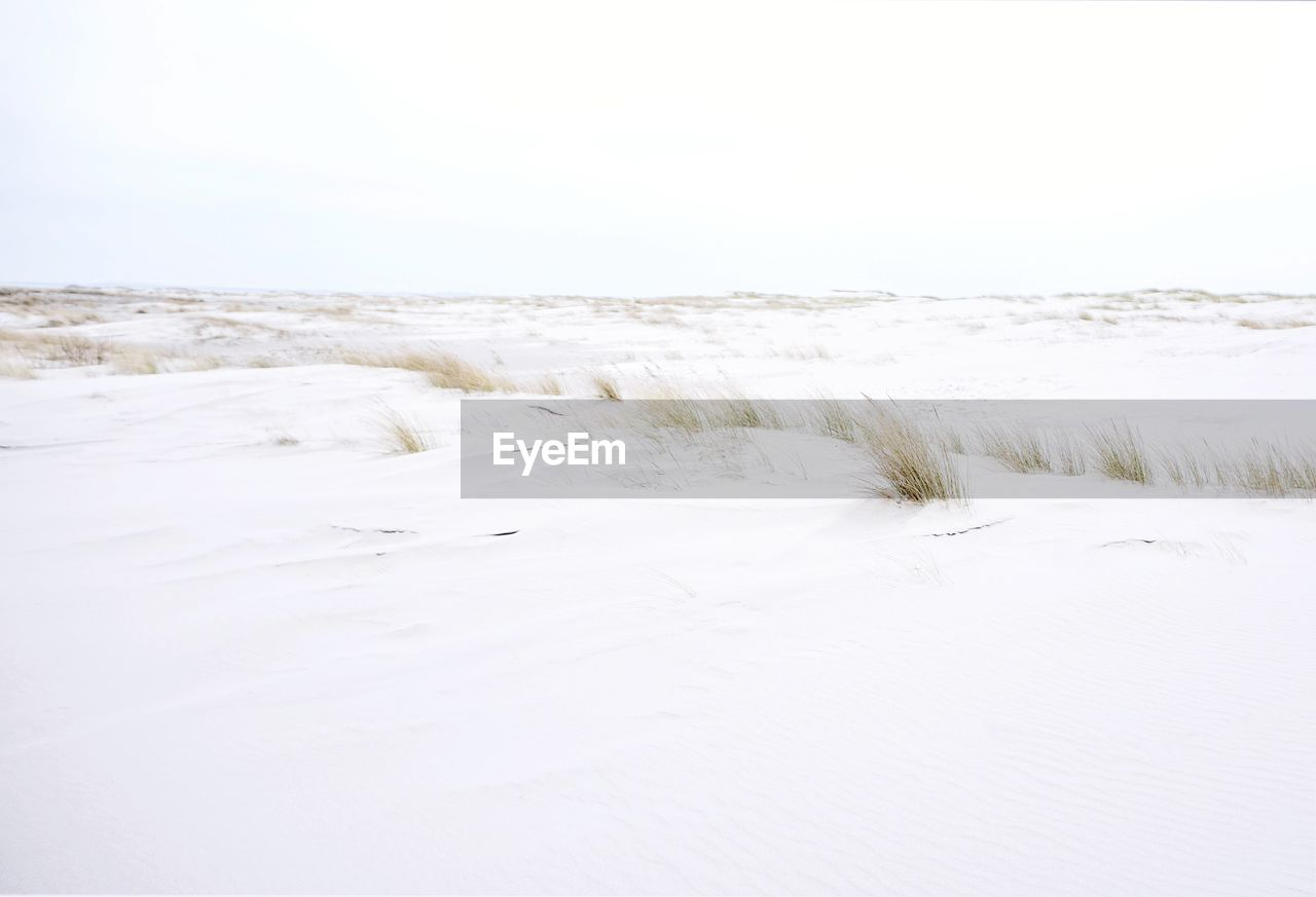 beauty in nature, tranquility, scenics - nature, sky, tranquil scene, land, white color, copy space, no people, nature, day, non-urban scene, sea, sand, clear sky, beach, winter, environment, water, outdoors, marram grass