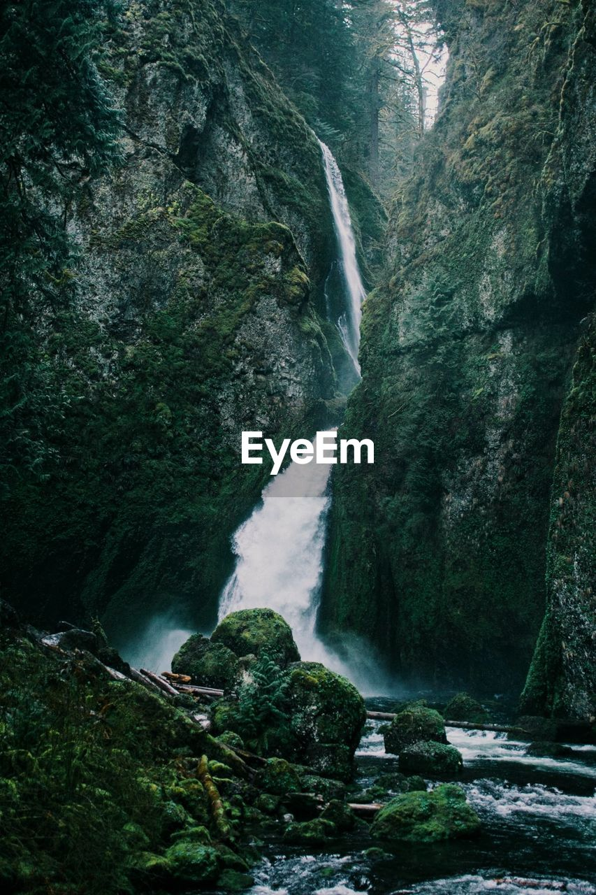 water, waterfall, scenics - nature, rock, flowing water, motion, rock - object, long exposure, solid, beauty in nature, land, blurred motion, forest, nature, environment, no people, rock formation, flowing, plant, outdoors, power in nature, rainforest, stream - flowing water, purity