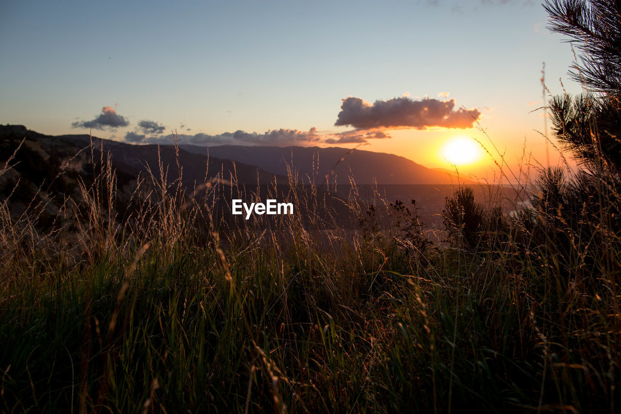 sky, sunset, beauty in nature, scenics - nature, tranquility, tranquil scene, plant, sun, sunlight, grass, nature, land, mountain, growth, landscape, environment, lens flare, non-urban scene, water, no people, outdoors, bright, timothy grass