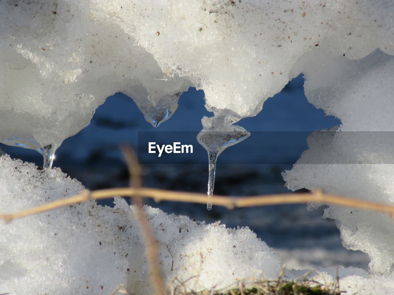 cold temperature, ice, winter, snow, frozen, melting, weather, frost, no people, white color, water, day, nature, ice crystal, close-up, outdoors, freshness
