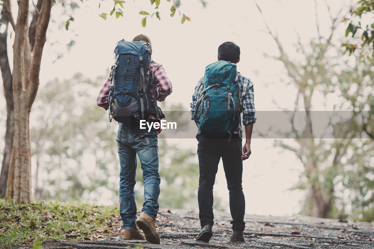 two people, rear view, men, real people, leisure activity, love, casual clothing, bonding, togetherness, focus on foreground, lifestyles, tree, day, nature, people, walking, plant, positive emotion, full length, outdoors, couple - relationship, arm around